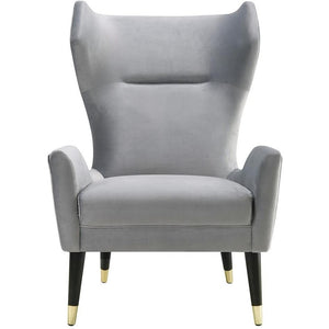 TOV Furniture Modern Logan Grey Velvet Chair TOV-A155-Minimal & Modern