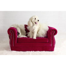 TOV Furniture Modern Yorkshire Pink Pet Bed TOV-P2038-H-Minimal & Modern