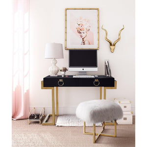 TOV Furniture Modern Majesty Desk TOV-G5491-Minimal & Modern