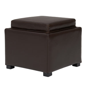 Cameron Square Leather Storage Ottoman by New Pacific Direct - 113042
