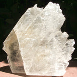 Large Selenite Standing Crystal CRSEST02