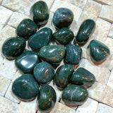 Tumbled Bloodstone~TUMBLDS