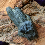 Actinolite In Quartz Crystal~CRACTQ15