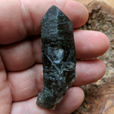 Actinolite In Quartz Crystal~CRACTQ18
