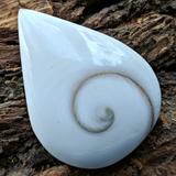 Shell Spiral Cabochon~JCABSHLL