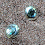Abalone Shell Post Earrings~JABAEAR1