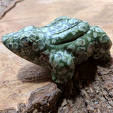 Rainforest Rhyolite Frog~CRRNFSTF