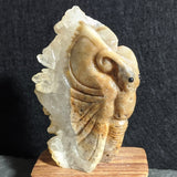 Butterfly Carving~CRCBTRFY