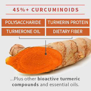 Naturenetics Optimized Native Curcumin 45%+ Curcuminoids bioactive turmeric