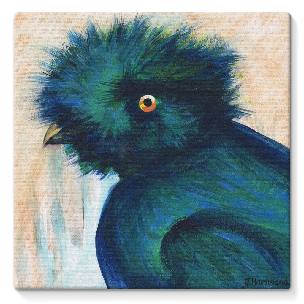 Bad Hair Day Stretched Canvas by Jacqueline Hammond
