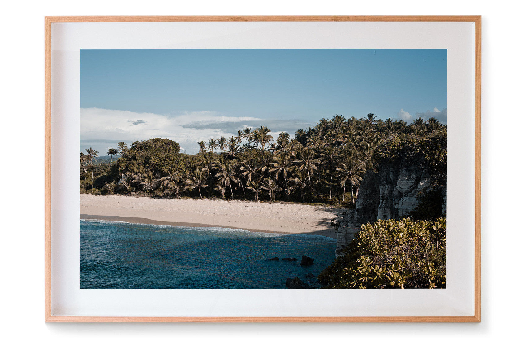 Palm Love by Nat Lanyon | PRINT GALLERY