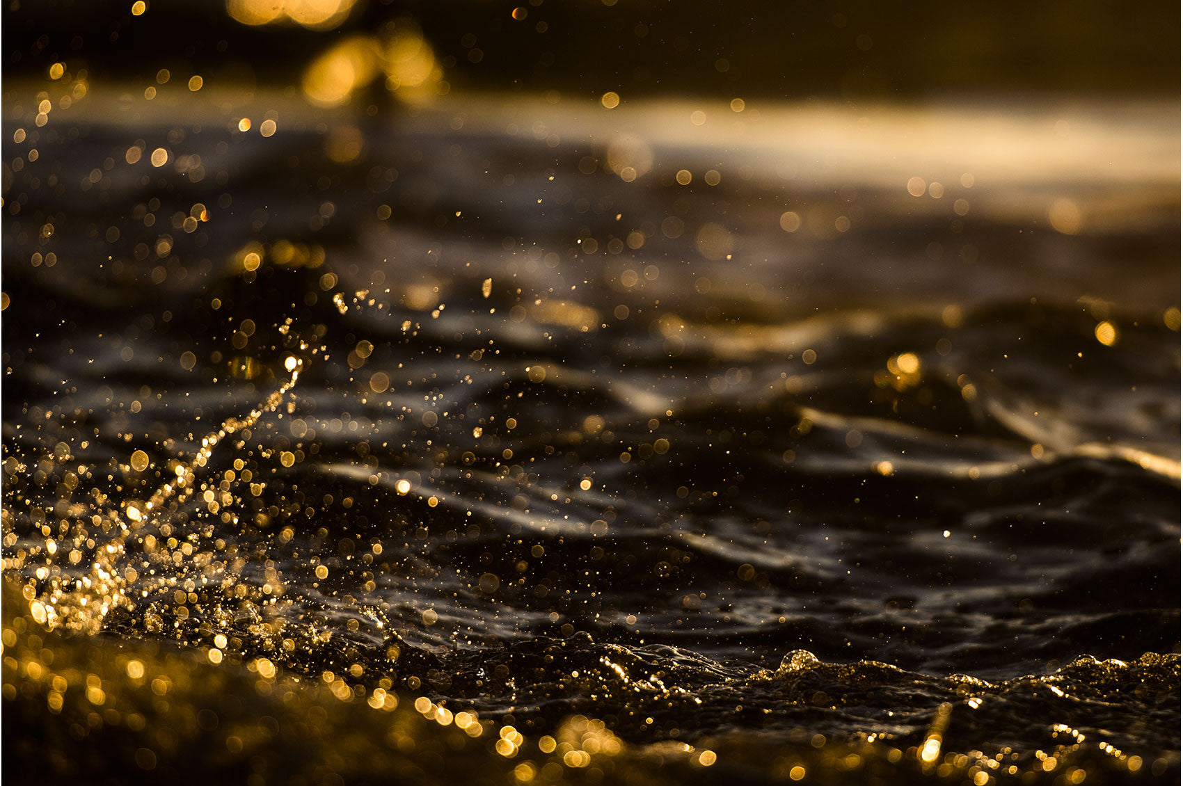 Suspended Gold by Chris Grundy | PRINT GALLERY