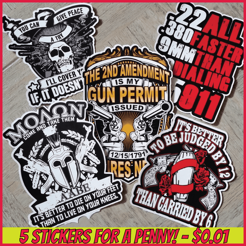 Gun Rights Stickers: Gun Rights Sticker 5 Pack