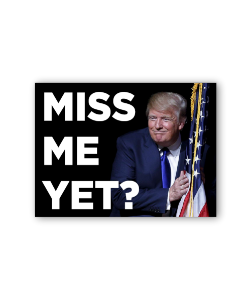 Miss Me Yet Bumpersticker Car Magnet