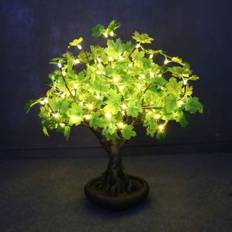 Enchanted Tree – 0.6m Green Maple Bonsai Tree