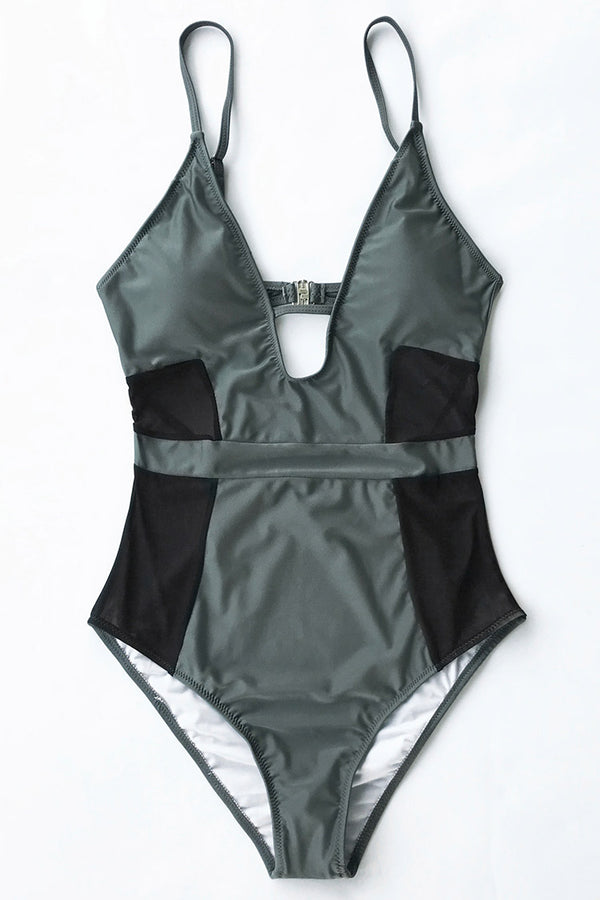 Absolut Lust Mesh One-piece Swimsuit