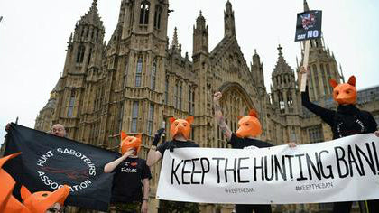 Foxes March on Parliament