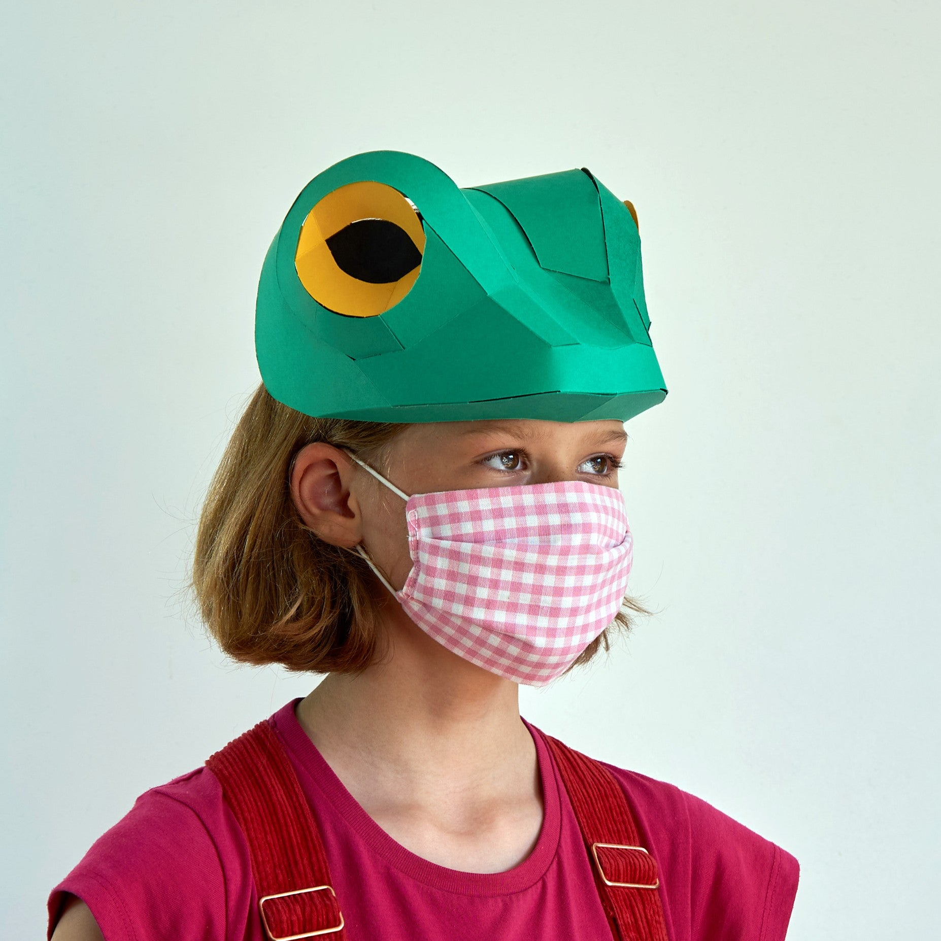 Children's Frog Mask