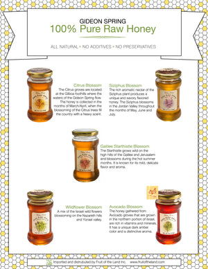 Ein Harod Pure Raw Honey - Wildflower Blossom