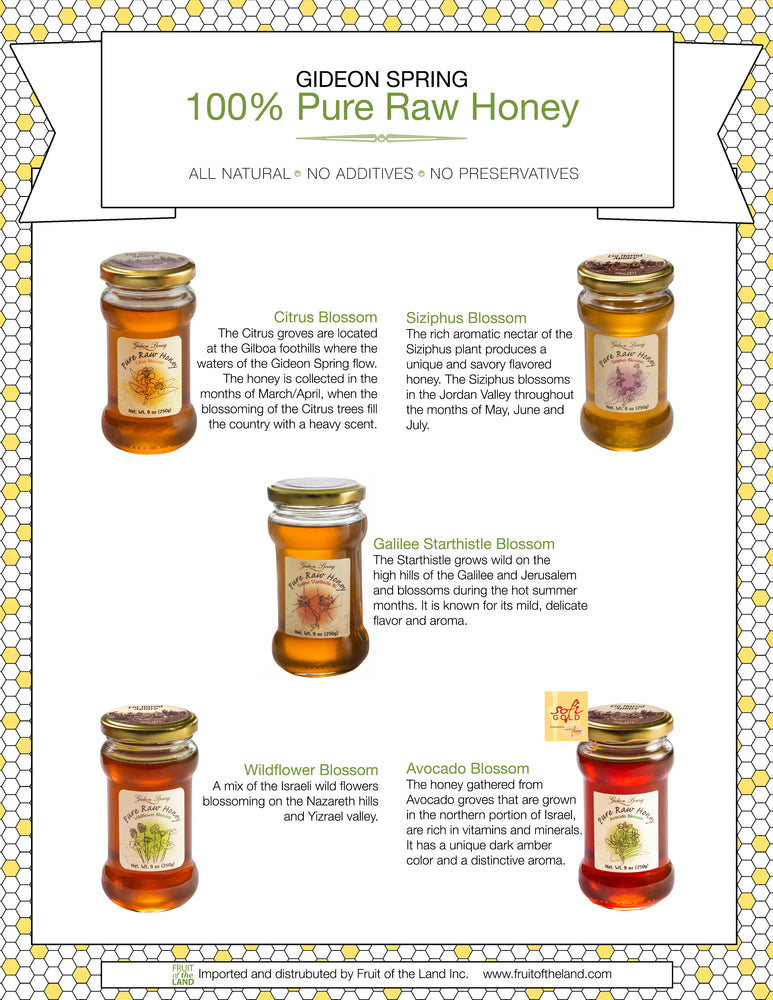 Ein Harod Pure Raw Honey - Citrus Blossom
