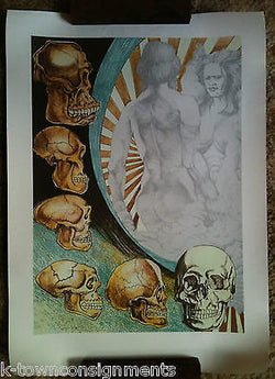 Adam & Eve Evolution Cro-Magnon Man Skulls Vintage Graphic Art Poster Print - K-townConsignments