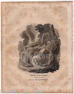 1 KINGS 18:31 PROPHET ELIJAH BURNT SACRIFICE ANTIQUE BIBLE ENGRAVING PRINT 1829 - K-townConsignments