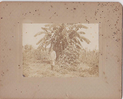 CUBA MILITARY SPANISH AMERICAN WAR ANTIQUE PHOTOS 1800s - K-townConsignments