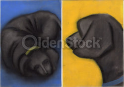 Black Labrador Puppy Dogs Cute Original Pastel Art Sketches Signed by Artist