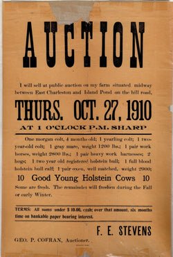 Island Pond Vermont Holstein Cows Livestock Auction Antique Broadside 1910