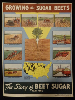 Sugar Beet Association Food Products Farming Vintage Health Advertising Poster