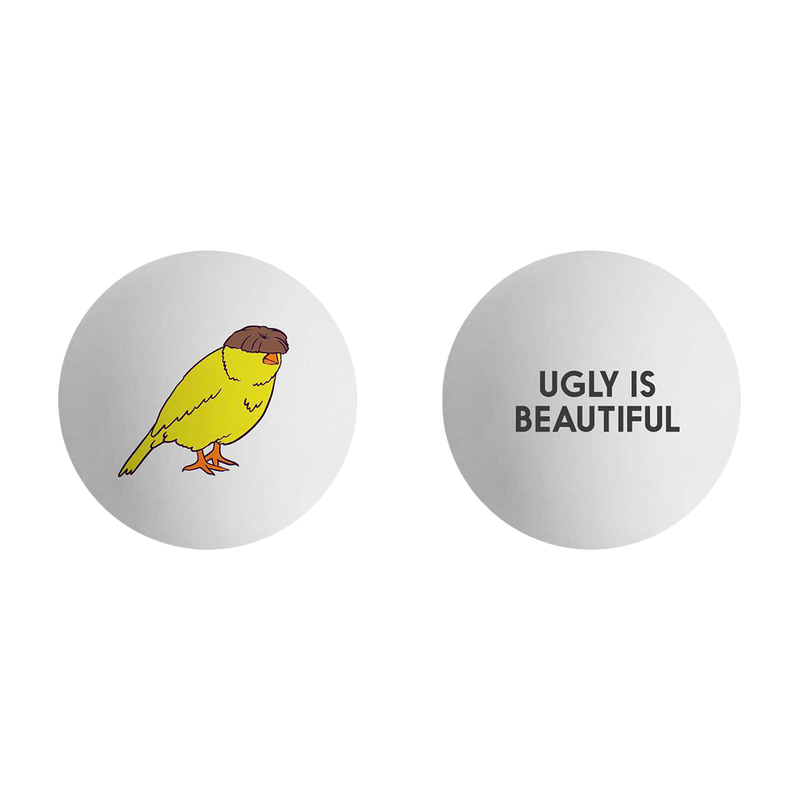 Ugly is Beautiful Ping Pong Balls