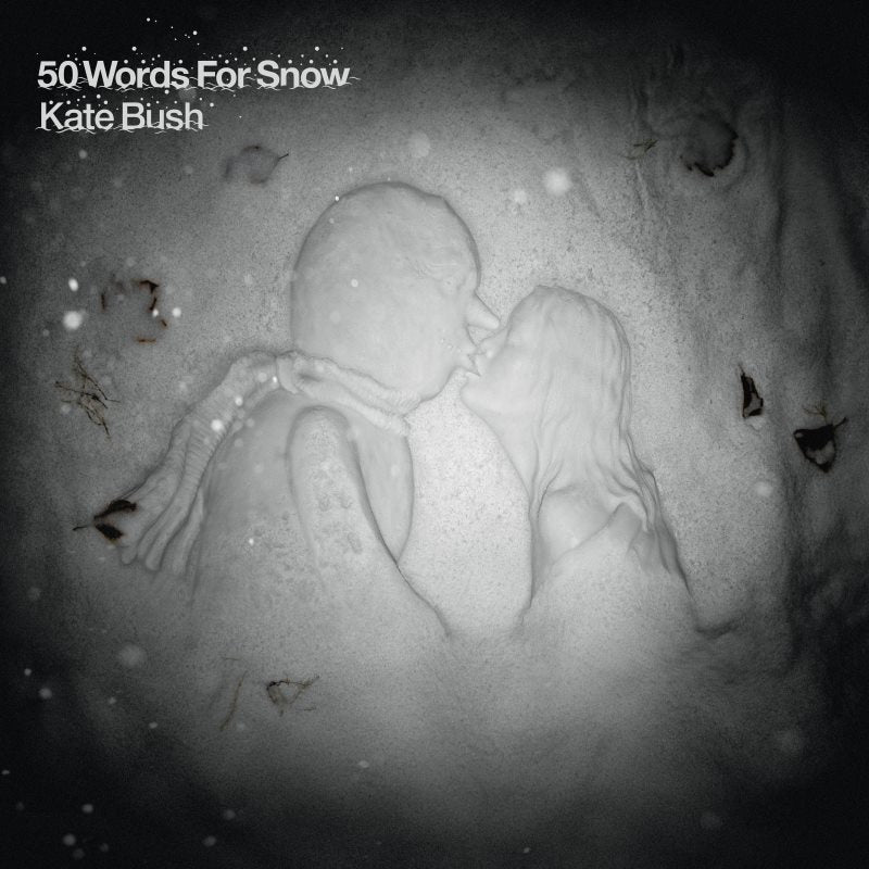 50 Words for Snow (CD)