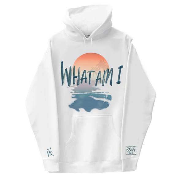 What Am I (Fan Design) Hoodie
