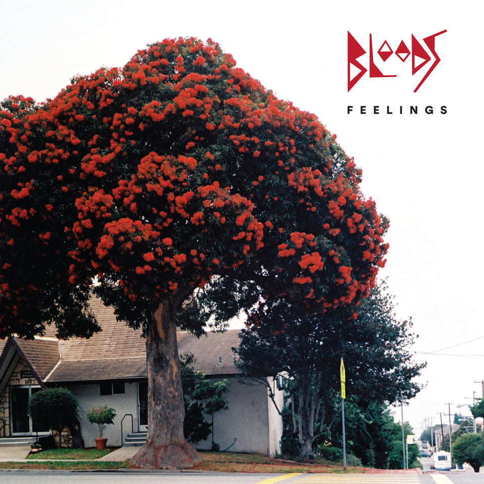 Bloods Feelings CD