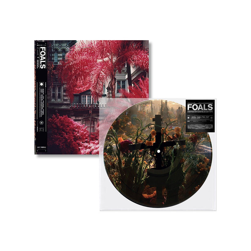 Exclusive Everything Not Saved Will Be Lost Pt. 2 Picture Disc + Pt. 1 Vinyl
