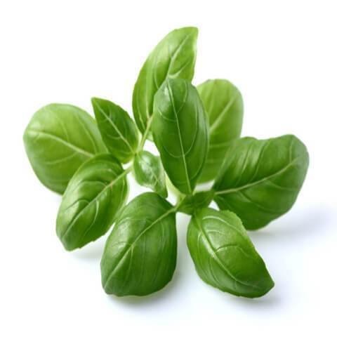 Basil Leaves    Bunch 100g|Hojas de albahaca    Manojo 100g