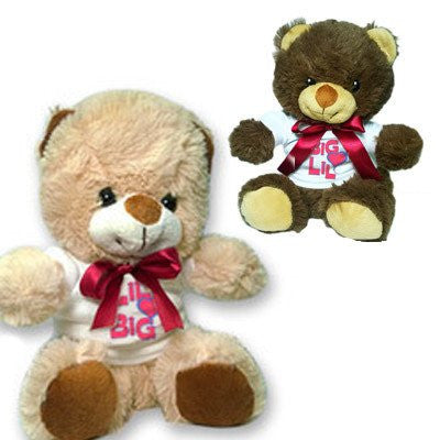 big loves lil custom sorority teddy bear sis sister valentines day love heart