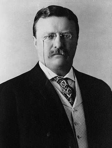 Something Greek Famous Politicians Theodore Roosevelt Alpha Delta Phi Fraternity