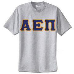 Alpha Epsilon Pi Standards T-Shirt - $14.99 Gildan 5000 - TWILL