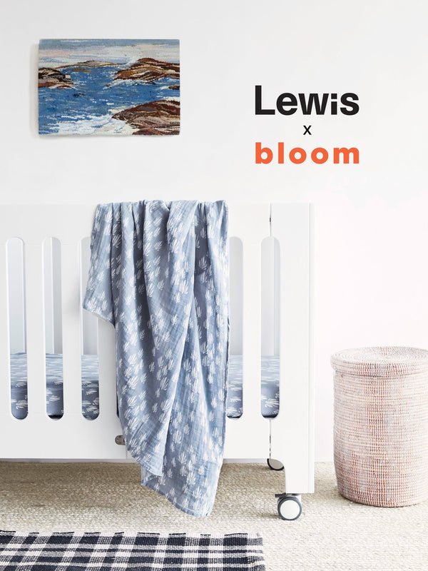 Lewis x Bloom