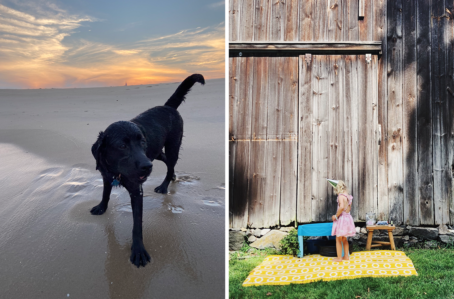 Snapshots from this week at the beach and playing in the barn.