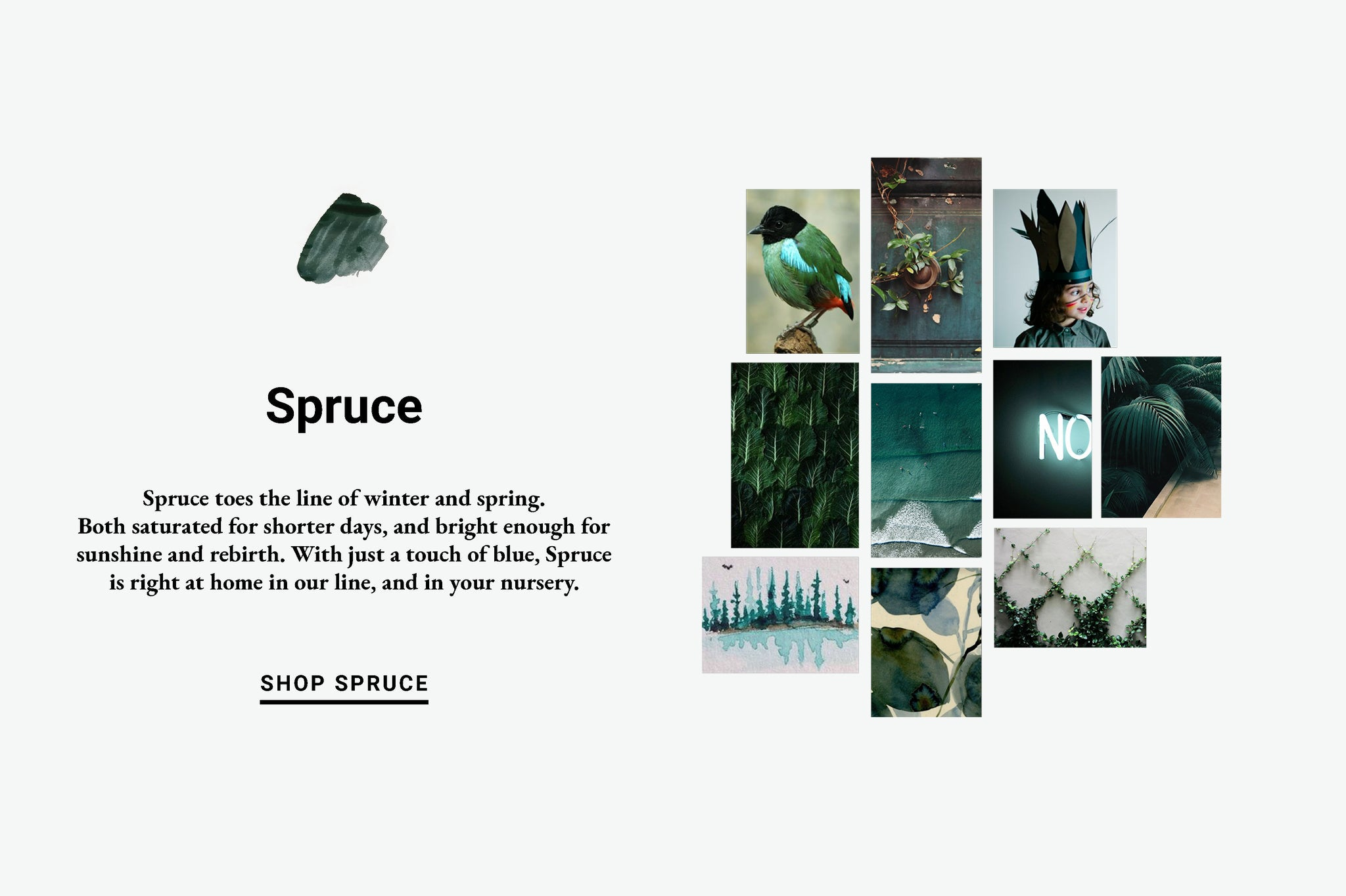 Spruce Color Inspiration Lewis Organic Baby