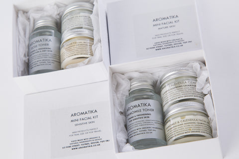 Dry Skin : Hemp Mini Facial Kit