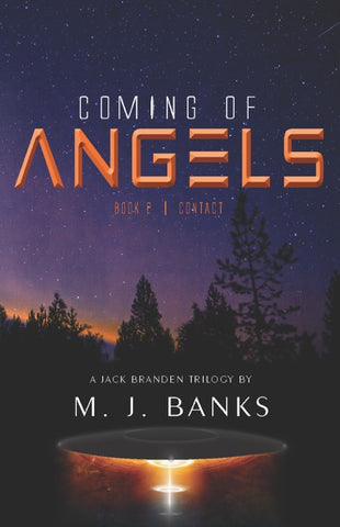 Coming of Angels, Book 2: Contact