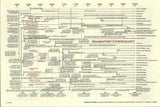 Anabaptist Chronology Chart - Richard Cryer