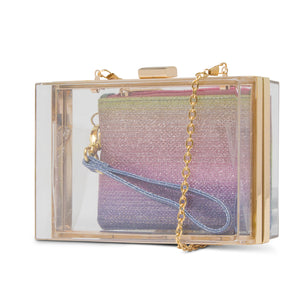 Lucinda Lucite Clutch With Pouch