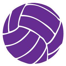 Go Run USA Volleyball Decal - Purple Round