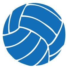Go Run USA Volleyball Decal - Royal Blue Round