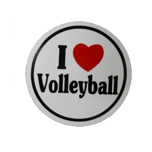 BaySix I Heart VB Decal