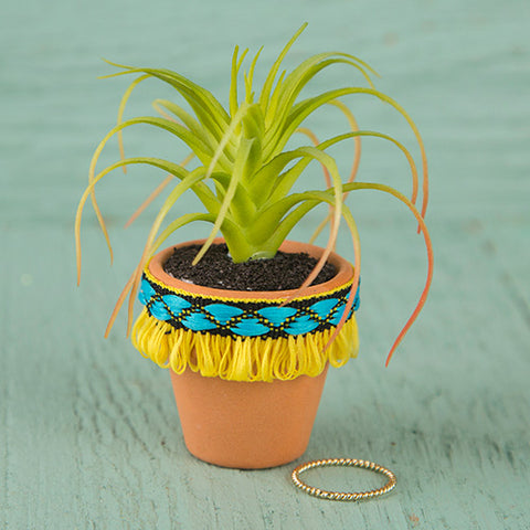Natural Life - Yellow Fringe Mini Succulent